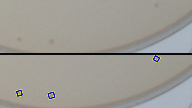 Poorly contrasted <i>E. coli</i>i> plate